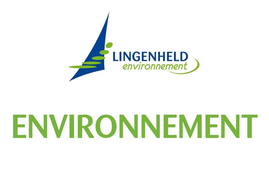 24 - logo Lingenheld